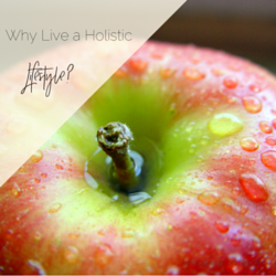 Why Live a Holistic Lifestyle?