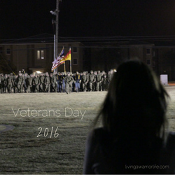 Veterans Day 2016 – Honoring the Brave