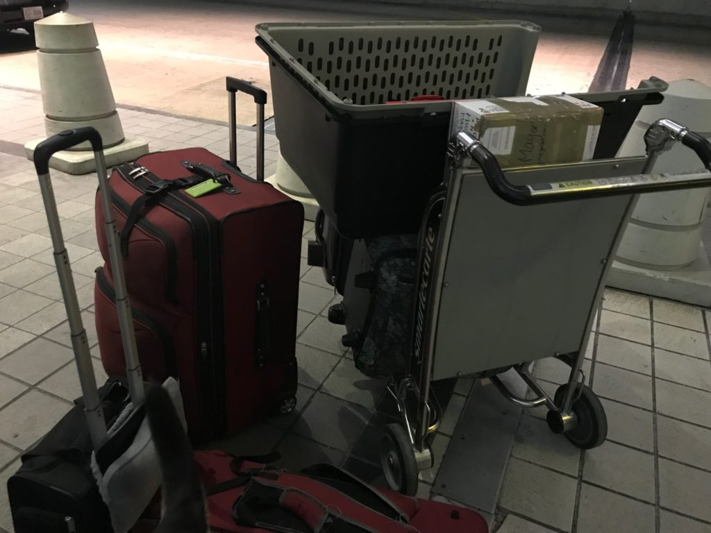 Luggage for Germany